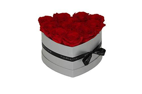 FLEURS du COEUR • Rosenbox Heart 12 (Grau) - 12 Infinity Rosen (Rot) | Flowerbox mit konservierten Rosen verschenken • Blumen von Herzen