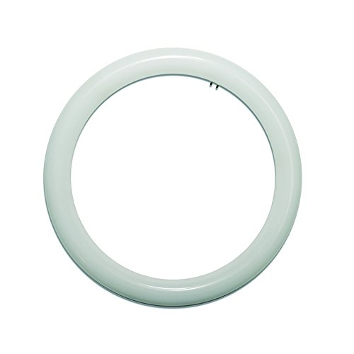 LightED - Tubo LED Circular G10, 20 W, Blanco, 300 mm