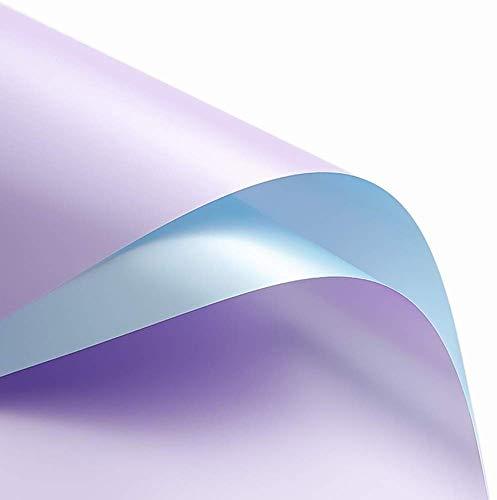 ZXL Envoltura de Dos Tonos, Bouquet Pearl Light Wrapper Banquete Envoltura de Regalos Flower Shop Bouquet Material de Embalaje, 60 * 60CM Origami (Color: # 5)