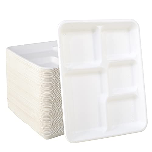 100% Compostable 5 Compartment Plates 125 Pack Eco-Friendly Disposable Sugarcane 10 inch Bagasse School Lunch Tray