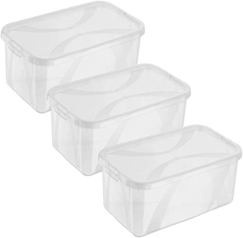 Rotho Arco 3er-Set Aufbewahrungsbox 5l mit Deckel, Kunststoff (PP) BPA-frei, transparent, 3 x 5l (34,4 x 20,0 x 10,6 cm)
