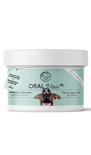 Annimally Zahnpflege Pulver für Hunde I Mittel gegen Zahnstein Hund - Natürliche besonders effektive Zahnreinigung bei Gelben Zähnen, Mundgeruch und Plaque (350 g XL)