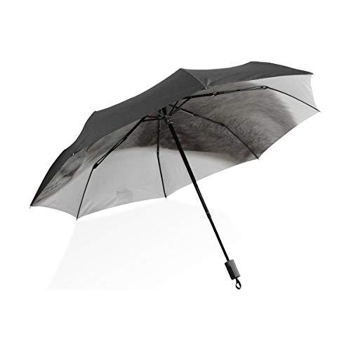 Paraguas de niña Lindo Gatito