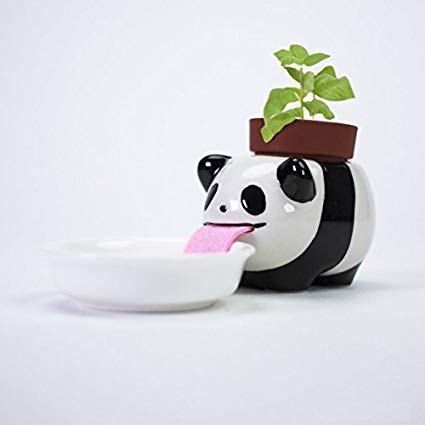 QSJi Peropon Panda Planter, Mini Rugzak Plant Pot Keramisch schepsel Cartoon Dieren Drinken Tong Pot Zelf Watering Plant Zaad Kit (panda)