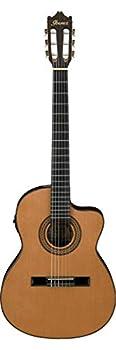 Best ibanez v70ce acoustic electric guitar transpa Reviews