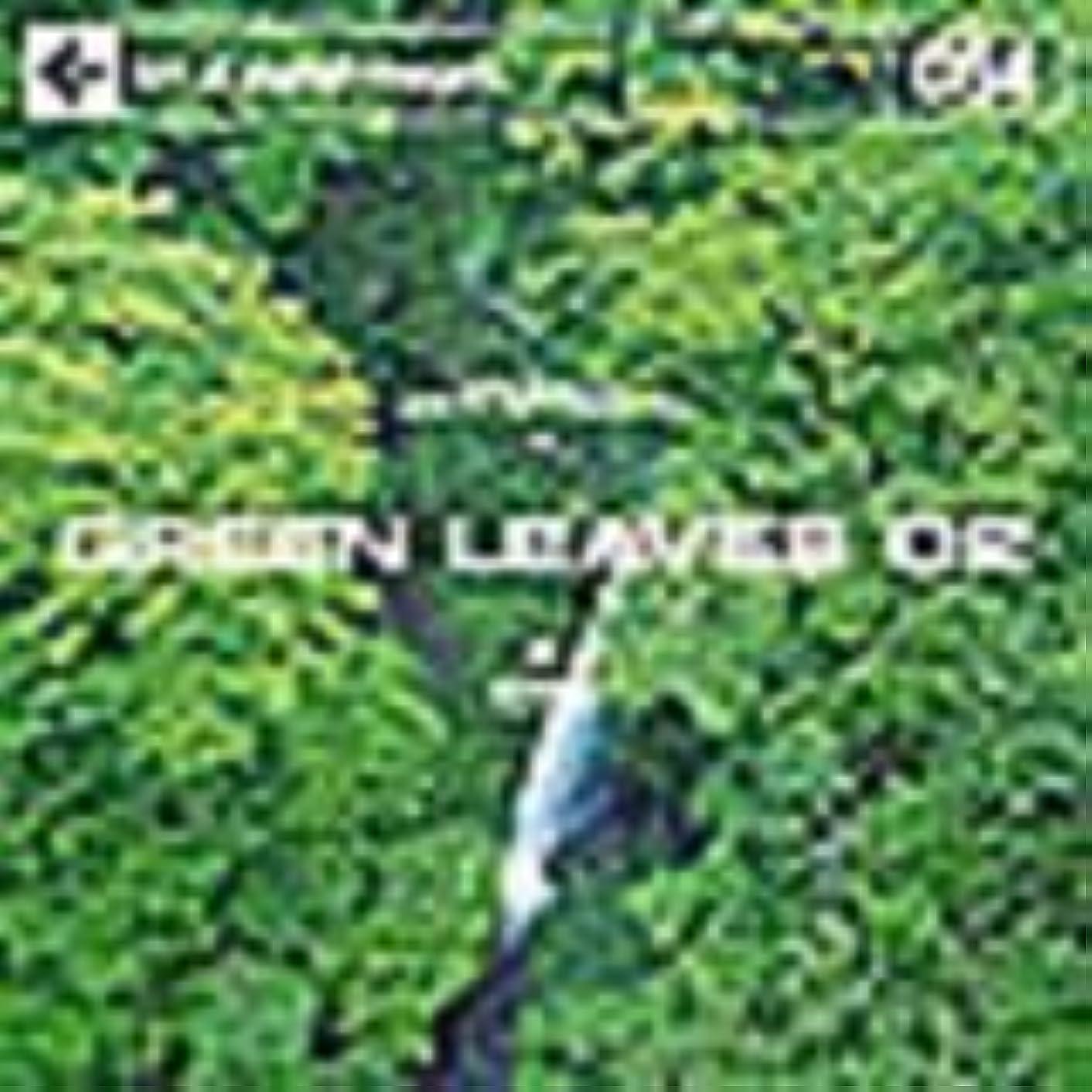 正直階下利益DAJ 064 フレッシュな新緑イメージ02