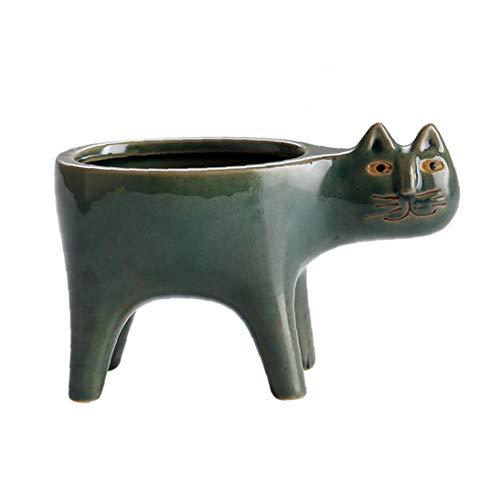 Forma De Cerámica Planta Suculenta Gato Pot Maceta Contenedor De Decoración del Hogar Verde
