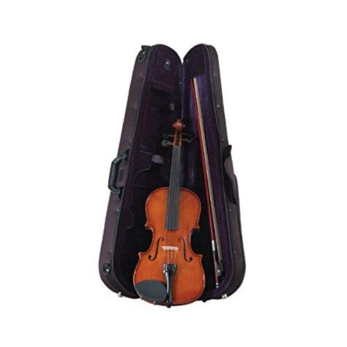Palatino VN-450-1/2 Allegro Violin Outfit, 1/2 Size