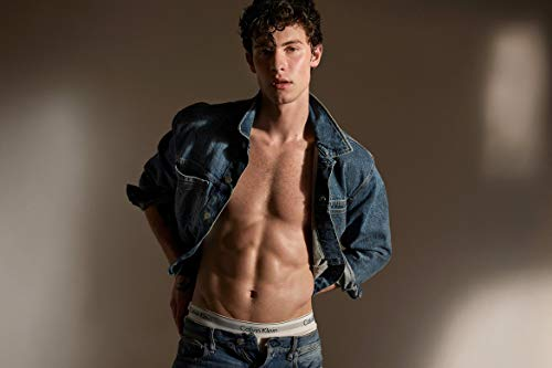 by burning desire Póster de Shawn Mendes Calvin Klein (30,5 x 45,7 cm)
