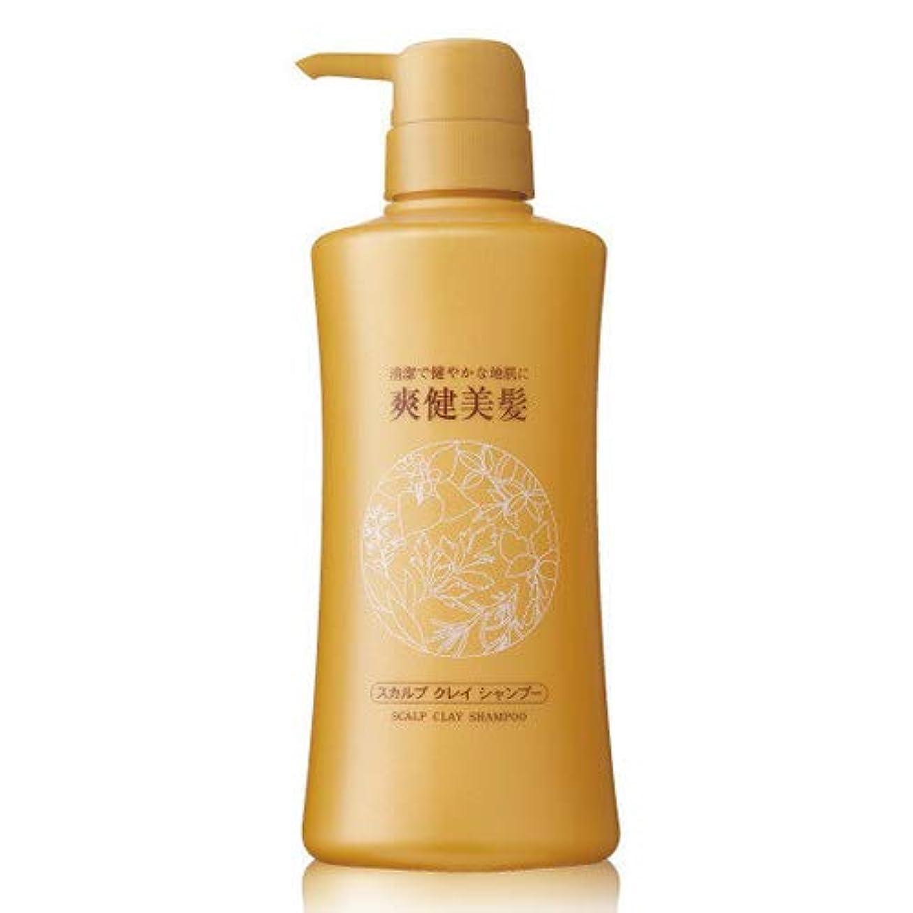 スムーズに技術的な大事にするエビス化粧品(EBiS) 爽健美髪スカルプクレイシャンプーN