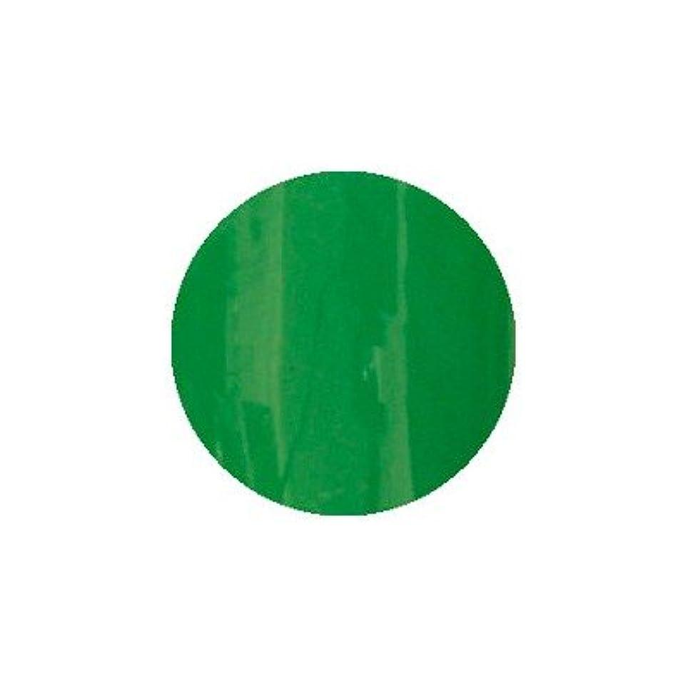 スリラー愛撫上に築きますロコジェル カラージェル M-29 ビビットグリーン 4g