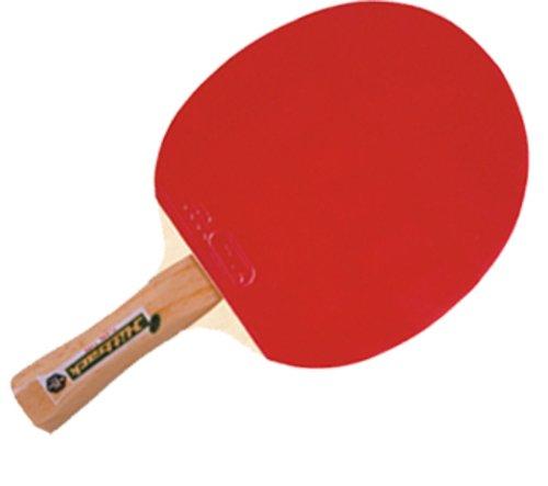 GKI Wood Hitback Table Tennis Racquet