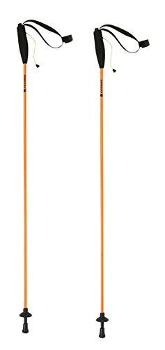 Ferrino 78153HCU.1SIZ Bastón Ultraligero para Running, Eiger, Coppia, 125 cm, Adultos Unisex, Multicolor, Talla única