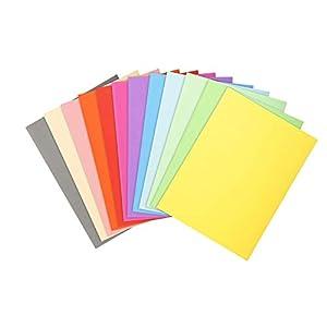 Exacompta 410000E – Lote de 100 Subcarpetas Forever® 10, Colores Surtidos