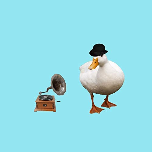 Mr.Duck
