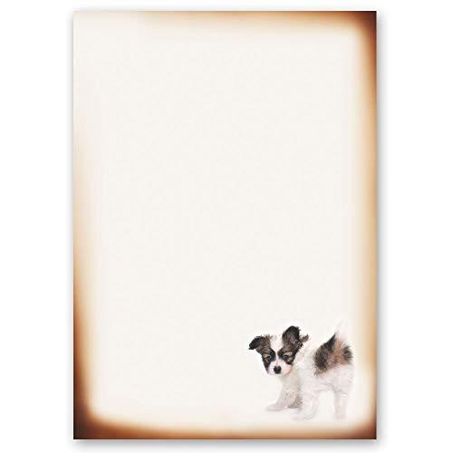20 Blatt Briefpapier Tierwelt LUSTIGER WELPE - DIN A4 Format - Paper-Media