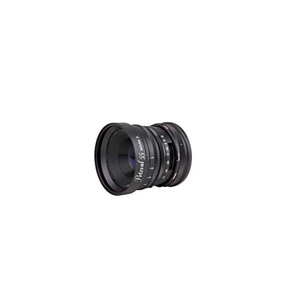 RetinaPix Lomography Petzval 55mm f/1.7 MKII Bokeh Control Art Lens - Compatible with Sony E Mount - Mirrorless Camera - Aluminium Black