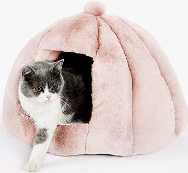 Bingopaw zucca casa per gatti,letto nido per media piccoli animali domestici Cuccia Pieghevole per Gatti cani tenda Grotta anche per scoiattoli conigli cincillà 51x51cm Nudo