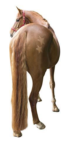 Kerbl 321900 Scherschablone Für Pferde, 3-Er Set