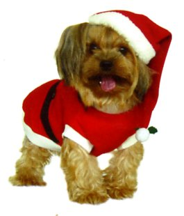 Dogs and Co Costume de Noël pour Chien Père Noël Rouge 35 cm