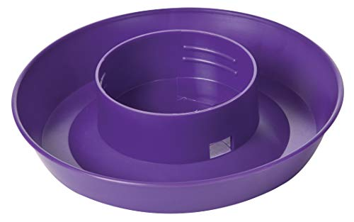 Little Giant Screw-On Poultry Waterer Base (1 Quart) Heavy Duty Plastic Water Tray Base for Container (Purple) (Item No. 740PURPLE)