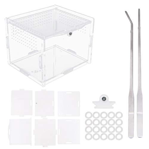 Caja de alimentación para reptiles de acrílico, 10 x 8 x 7 cm, de vidrio transparente, terrario con 2 pinzas rectas y curvadas para mascotas, insectos, arañas y caracoles