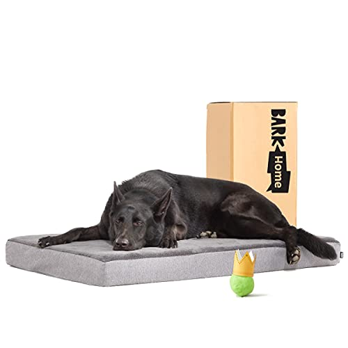 5. BarkBox Gel & Memory Foam Dog Bed
