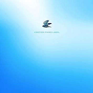 홀로 나는 새