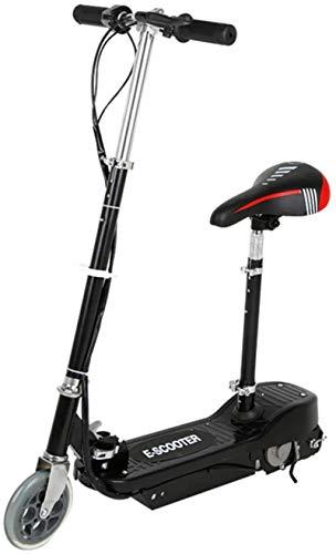 RDJM Bici electrica, Bicicleta eléctrica Plegable Transporte Mini de Dos Ruedas Vespa Inteligente de Carga for Adultos aleación de Aluminio de la absorción de Choque (Color : Black)