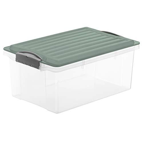 Rotho Compact Caja de Almacenamiento 13l con Tapa, Plástico (PP) sin BPA, Turquesa/Transparente, A4/13l (39,5 x 27,5 x 18,0 cm)