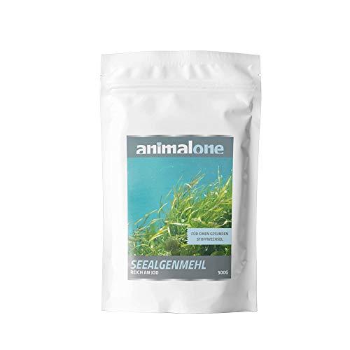 animalone - SEEALGENMEHL 500 g - für Pferde - natürliche Jodquelle - Hoher Gehat an Mineralien - 100% Natürlich - Naturprodukt