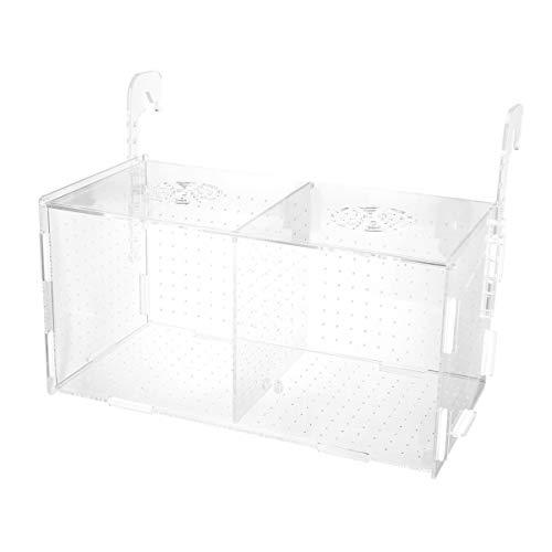 Balacoo fischzuchtbox/fischzuchtbox schwimmend haltbar transparent zucht isolierbox Fisch brüterei Aquarium für aquatikshop Aquarium