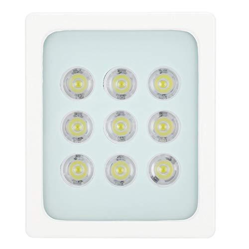 Luz de vigilancia, luz de relleno de potencia de salida de 9 W, ángulo ajustable Dc12V 9 cuentas de lámpara LED Villa de dormitorio para cámara CCTV de seguridad para el hogar