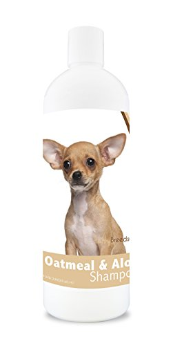 best shampoo for Chihuahua