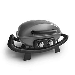 Portable 2-burner gas grill