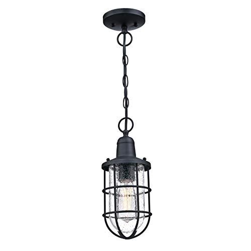 Westinghouse iluminación 6334840 Lámpara colgante para exteriores de una sola luz Crestview, acabado negro texturizado con vidrio transparente fantasía