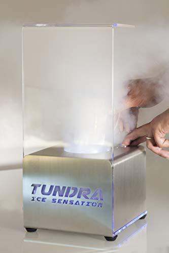 TUNDRA ICE INTERNATIONAL Abatidor de Temperatura en Cubitos de Hielo, Italian Design,...