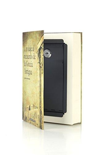 Arregui C9381 Caja De Caudales Camuflada Como Libro De Texto
