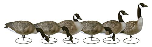 Flambeau Outdoors 8990FBU Storm Front 2 Canada Goose Decoys, Full Body Flocked Heads - 6-Pack