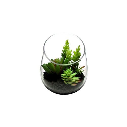 Arranjo artificial com 6 mínis suculentas em vaso de vidro, 9 cm. Ótimo para casa ou escritório
