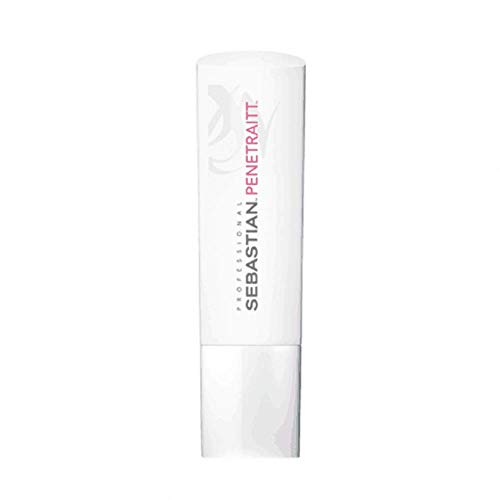 Sebastian Professional Foundation Penetraitt Conditioner, per stuk verpakt (1 x 250 g)