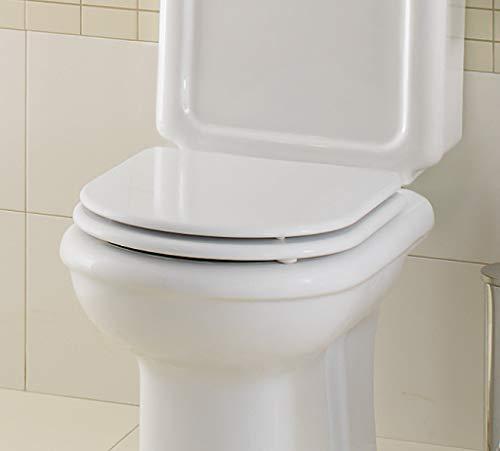Sanitana Grecia lackiert . Toilettensitz Pergamon Holz