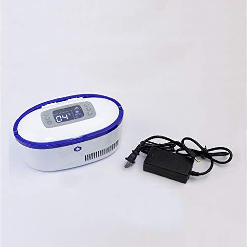 Insulin-Kühlschrank - High-Definition-Display Langzeit-Plug-in Intelligent Thermostat 2-8 ° C Car Home Tragbarer Kühlschrank (zwei Batterien)