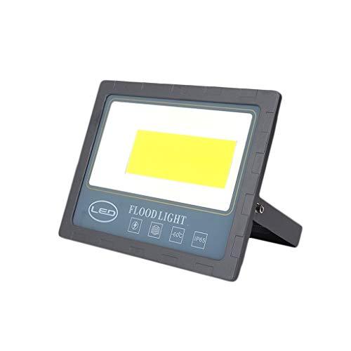 FINDYU Focos LED Exterior Anticorrosivo Robusto Impermeable IP65 Aluminio Trabajo Lámpara De Seguridad por Almacén Cartelera Taller Jardín Floodlight (Color : Luz Blanca, tamaño : 200W)