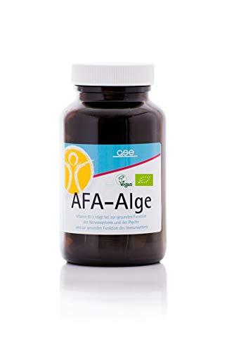 GSE AFA-Algen Tabletten 240St.