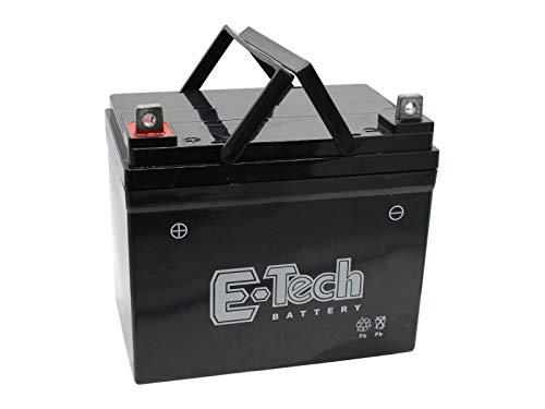 SECURA Batterie 12V 22Ah (+ Pol Links) kompatibel mit MTD Smart RF 125 13HH76KF600 Rasentraktor