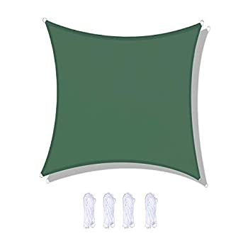 anroog Waterproof 10'x10'Sun Shade Sail Canopy Rectangle UV Block for Outdoor Patio and Garden Activities Yard  10'x10',Dark Green
