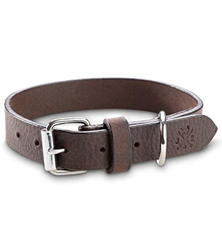 Jack & Russell Collar de Perro de Cuero de Primera Calidad Hendrix - Original Collar de Perro de Cuero con el Sello en Relieve - Cuero de búfalo marrón Oscuro (S)