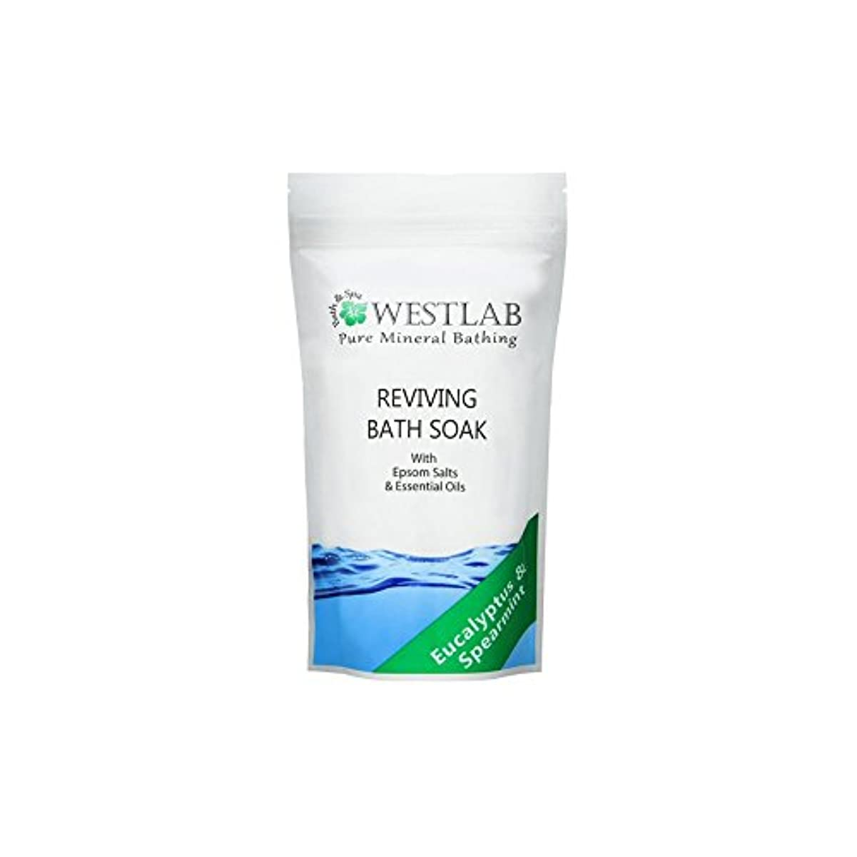 また明日ね比類のない振る(500グラム)をソークエプソム塩浴を復活させます x4 - Westlab Revive Epsom Salt Bath Soak (500g) (Pack of 4) [並行輸入品]