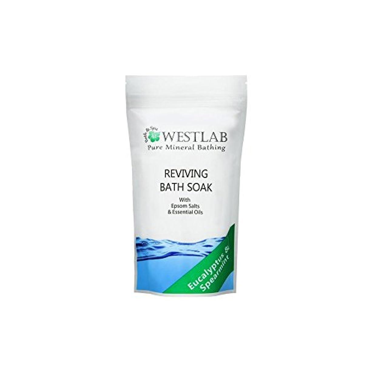 不良品記憶から(500グラム)をソークエプソム塩浴を復活させます x4 - Westlab Revive Epsom Salt Bath Soak (500g) (Pack of 4) [並行輸入品]